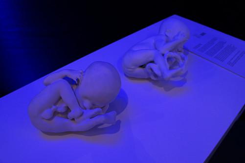 3D_printshow_London_2012_1