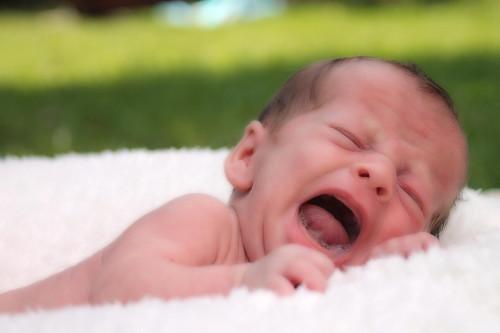 da-li-vasu-bebu-muce-grcevi