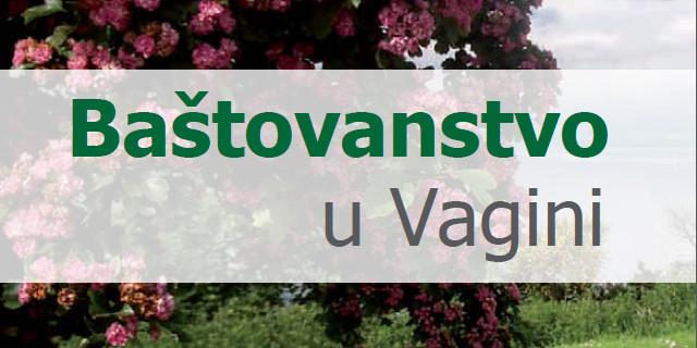 bastovanstvo-u-vagini