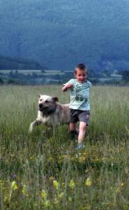 Dečak i pas