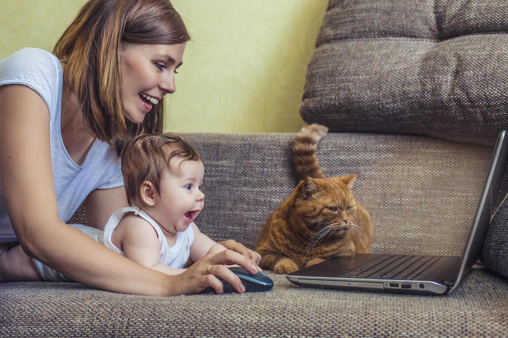mama beba maca kompjuter