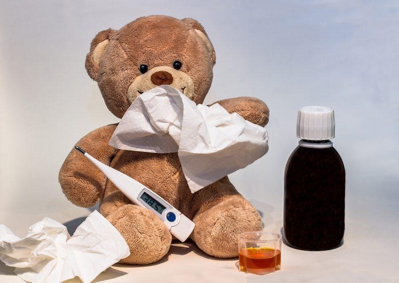 Virus gripa