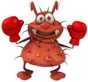Bakterija bokser